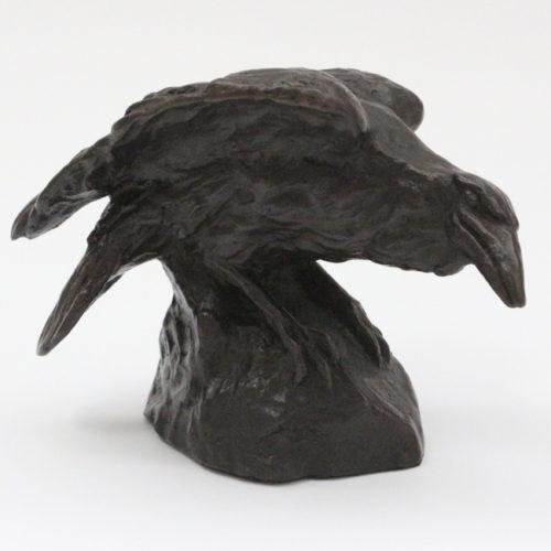 raven01[1]